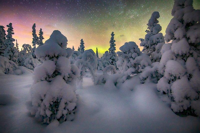 Морозной ночьюphoto preview