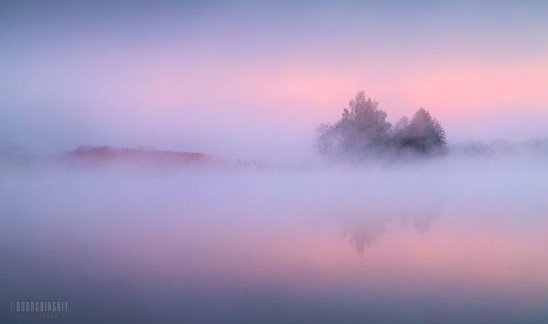 река, туман, рассвет, дерево, лето, мираж Речные миражиphoto preview