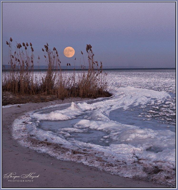 вечер, зима, полнолуние Вечер полной Луныphoto preview