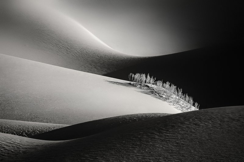 desert,landscape,black and white,neture,abstraction,conceptual Desertphoto preview