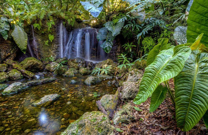 Tropical waterfallphoto preview