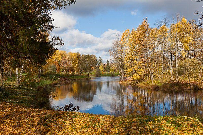 осень, парк Просто осень.photo preview