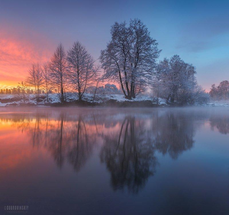 река, зима, рассвет, отражения, дерево Отраженияphoto preview