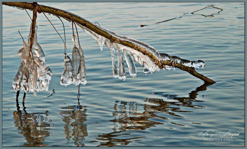 зима, оттепель, сосульки, отражения В ледяном кляреphoto preview