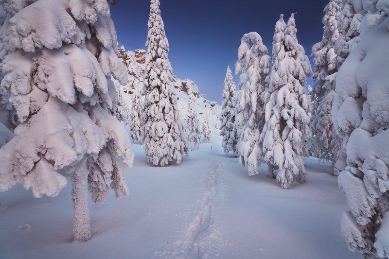 таганай, урал, горы, зима, лес По следам зимыphoto preview