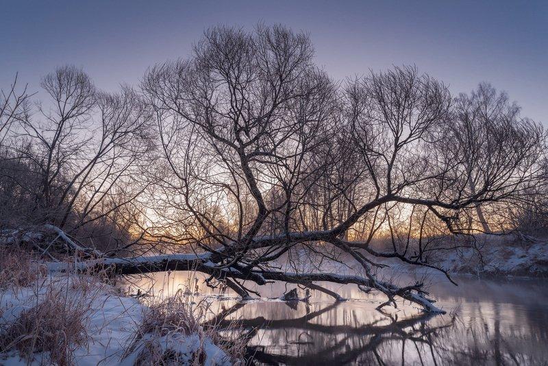 истра, рассвет, бужарово, зимний пейзаж Предрассветное состояниеphoto preview