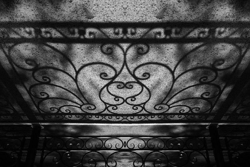 черно-белое, графика, минимализм, настроение, форма, фактура, art, photos, black-white Бабочкаphoto preview