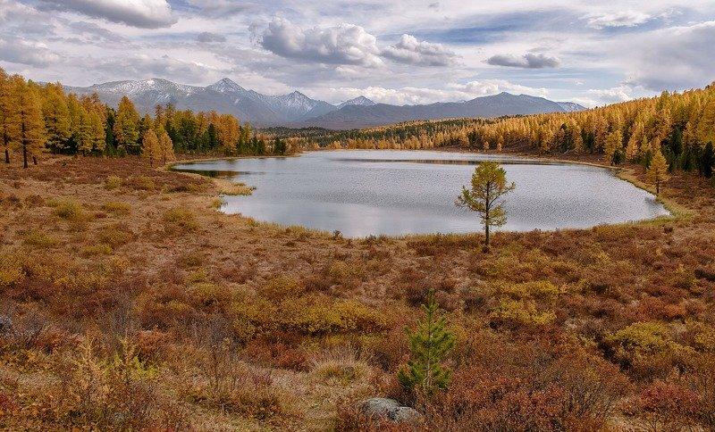 алтай, оз. киделю. осень Осеннее Киделю.photo preview