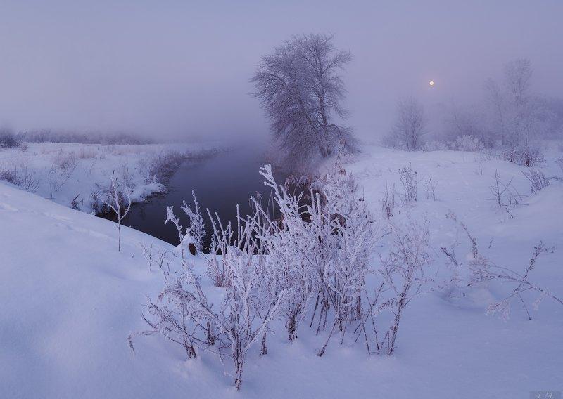 утро, мороз, туман, иней, речка, луна, пейзаж, рассвет, снег, зима, morning, dawn, winter, landscape, frozen, fog, small, river, frost, snow, moon, foggy, trees, misty, mood ***photo preview