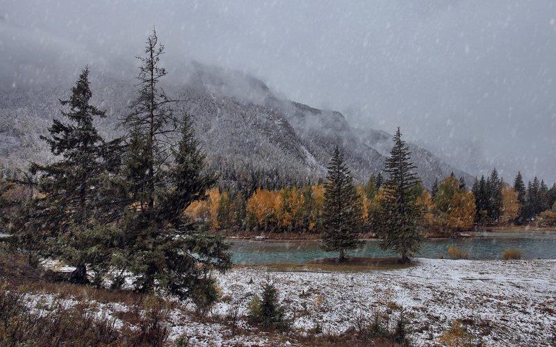 природа, пейзаж, река, чуя, осень, метель, снег Падал теплый снег...photo preview
