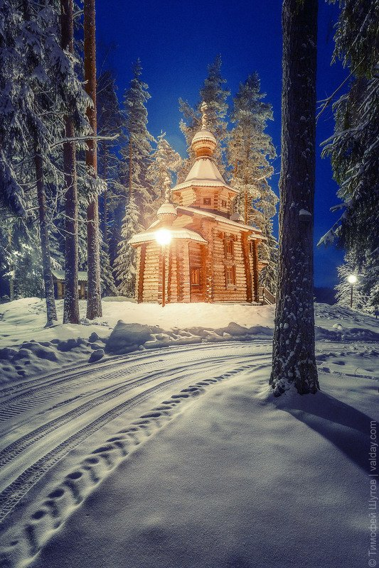 валдай Сказка ночного Валдайского лесаphoto preview