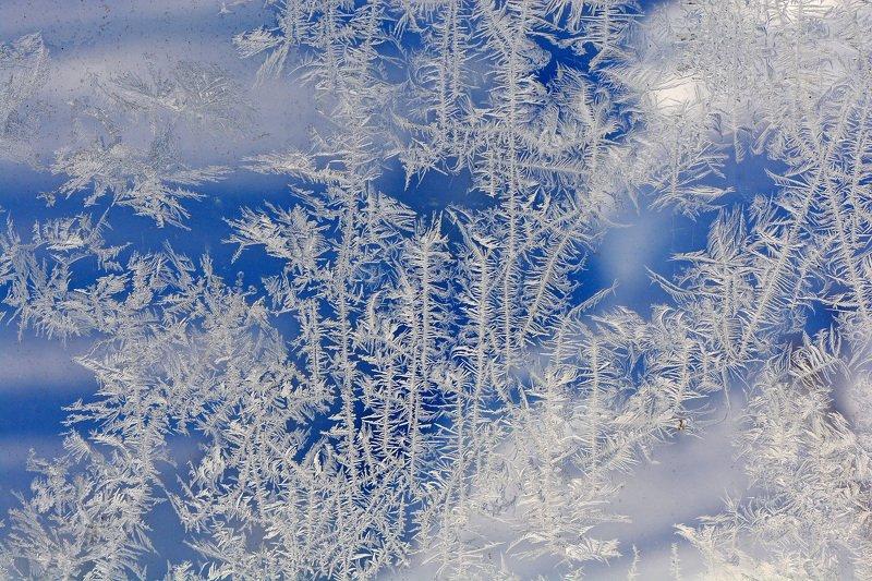 морозные узоры, узоры на окне, зима, макросъемка Морозные узорыphoto preview