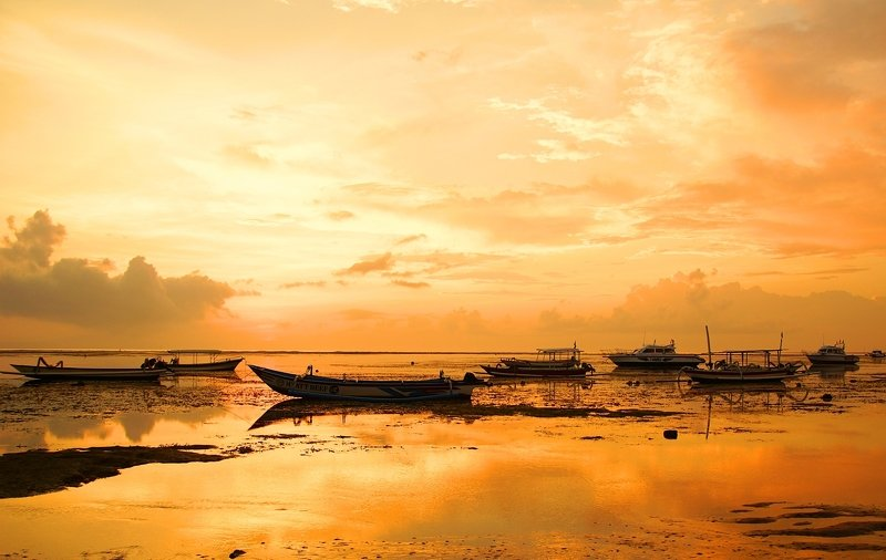 Orange morningphoto preview