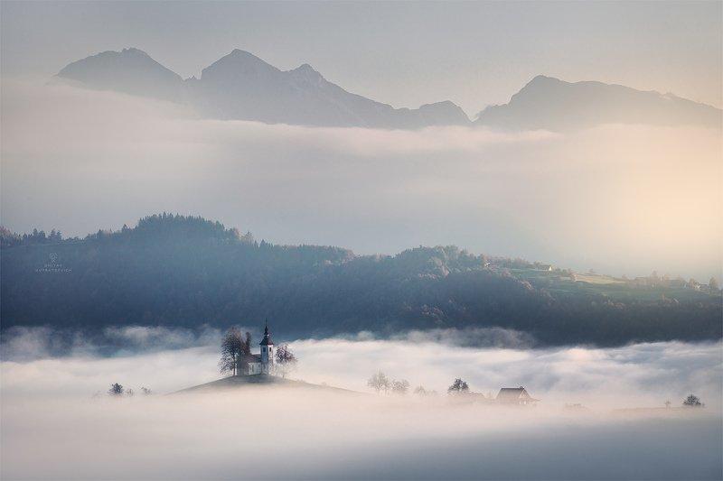 В тумане утраphoto preview