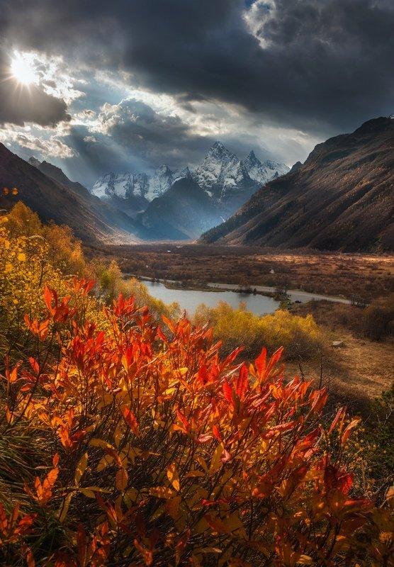 Золотая осень в Гоначхирском ущельеphoto preview
