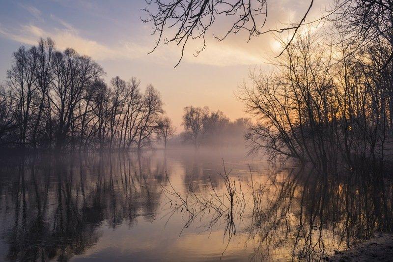весна,паводок,утро,рассвет,пейзаж,природа,дерево,украина,гадяч,сергей корнев,красота,фотограф,пейзажная фотография,колорит,искусство,композиция Тихий весенний рассвет на рекеphoto preview
