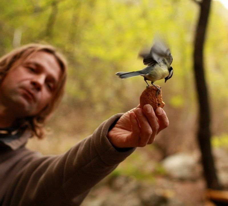 Повелитель птицphoto preview