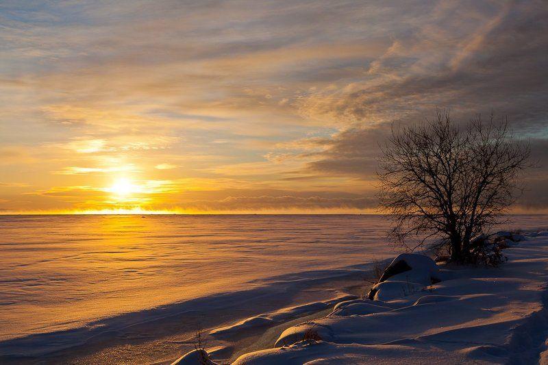 рассвет Декабрьский рассвет на Финском заливеphoto preview