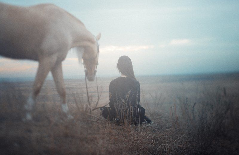 Horse walkphoto preview