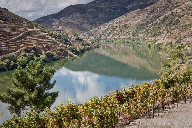 Португалия. Долина реки Дору.photo preview