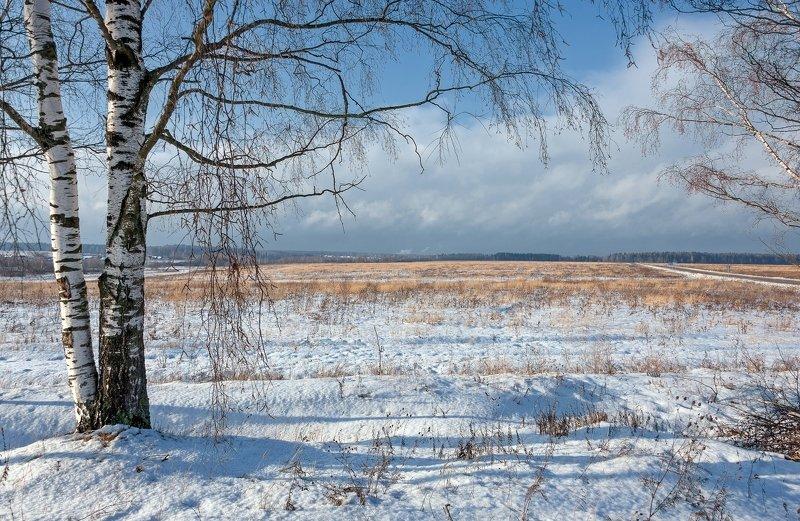 Под зимними березкамиphoto preview