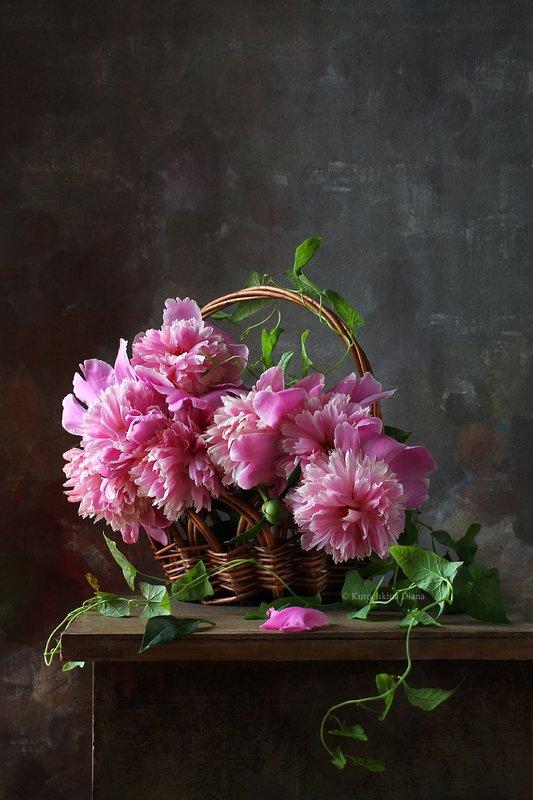 натюрморт, цветы, букет, пионы, корзина с цветами Корзинка с пионамиphoto preview