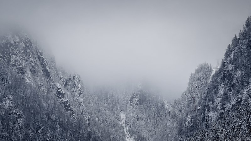 dream,landscape,alexandrucrisan,nature,scenery,countryside,far,away,romania,dreamland,magic,sound,lonely,mountain,myromania,forest,trees,winds,hill,tree,white,poem,haiku,minimalism,minimal,winterscape,cold,freeze,breeze,16,panoramic,wintertale,for,mist,dr Wuthering heightsphoto preview