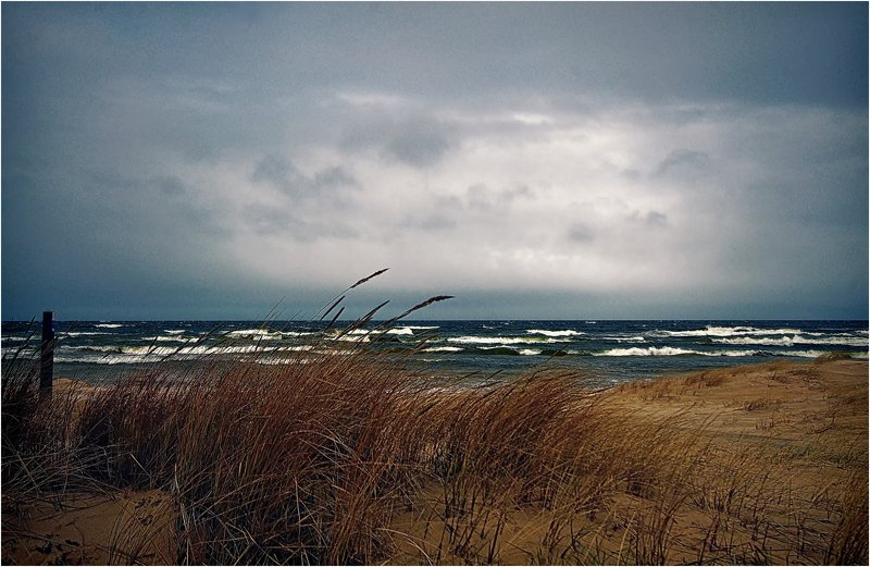 Балтика.photo preview