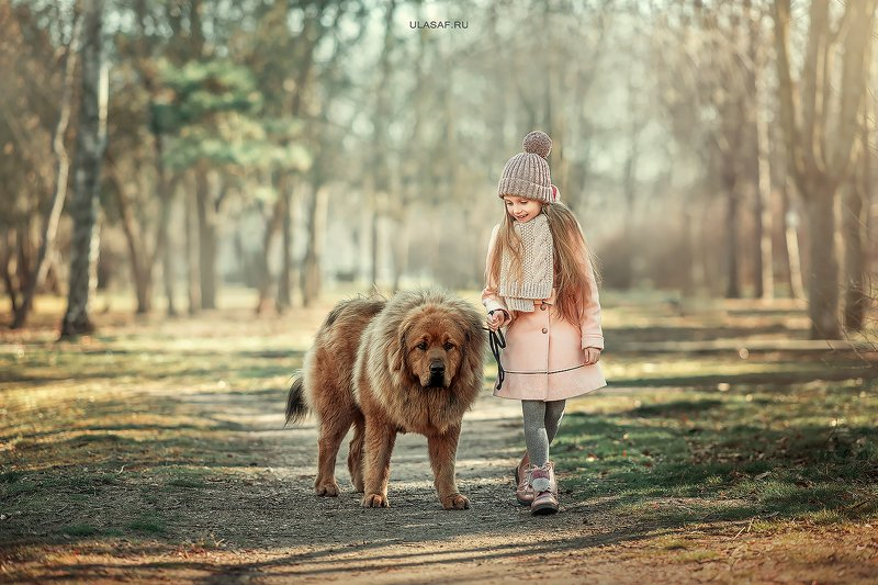 art photo, glamour, портрет, зима, winter, ребенок, дети, девочка, girl, животное, собака, мастиф, dog, радость, people, малыш, друзья, happy, любовь, love, 105mm, kid, children, beautiful ***photo preview