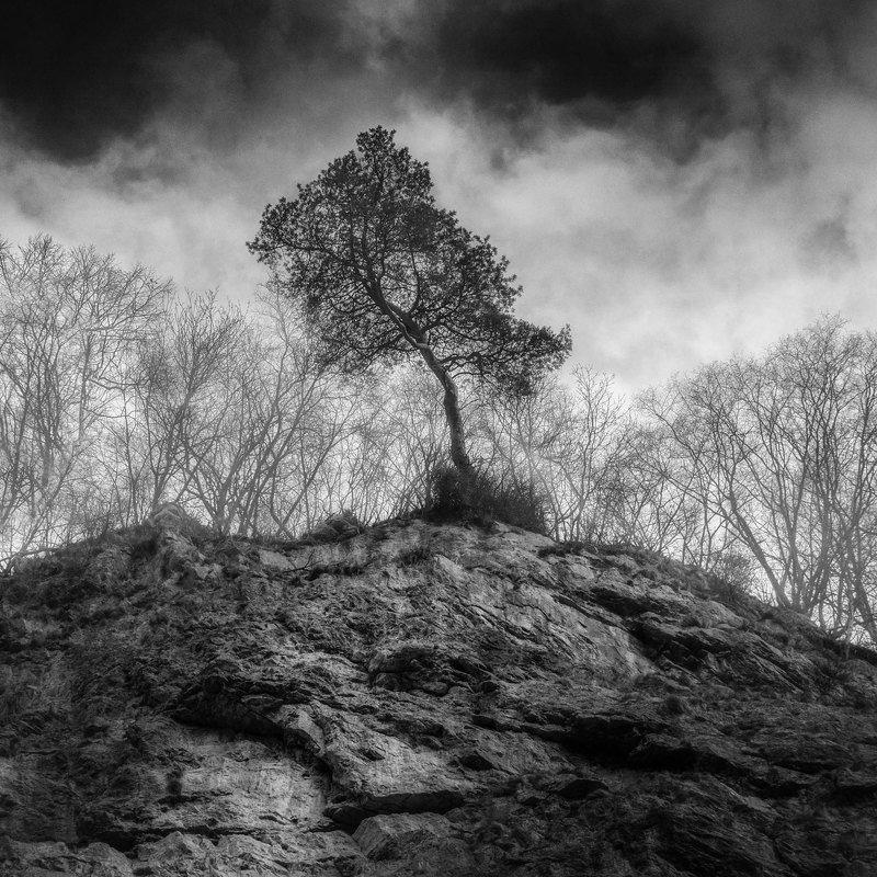 пейзаж, природа, чб, landscape, nature, Полководецphoto preview