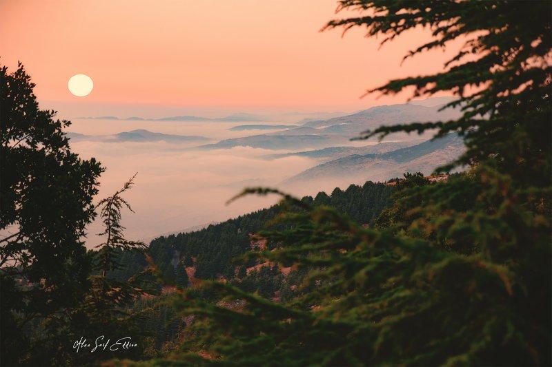 nature, landscape sun trees sunset orange Sunset in Lebanonphoto preview