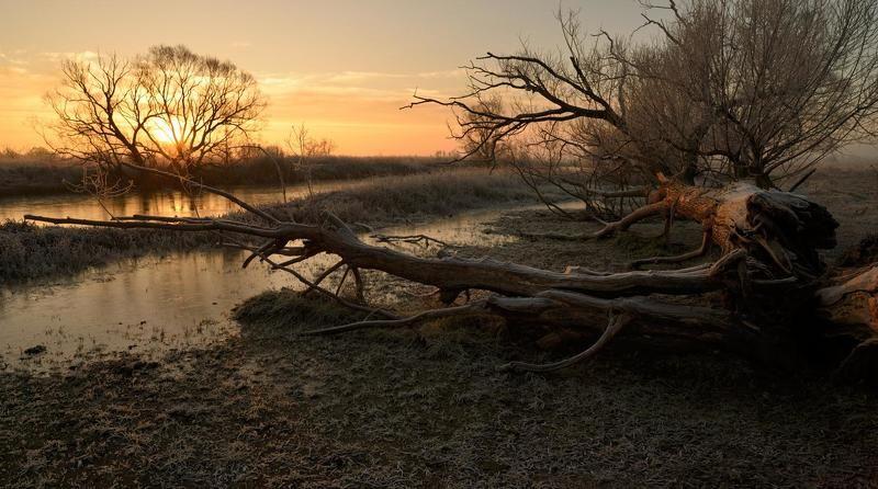 Холодное утро 23-го...photo preview