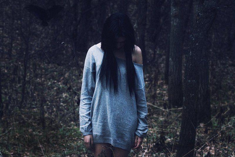 dark forestphoto preview