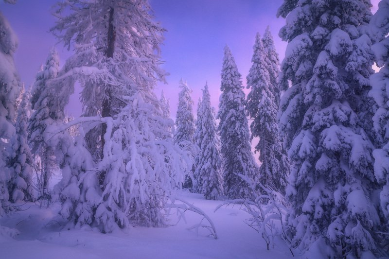 таганай, урал, горы, зима, лес Зимняя прогулкаphoto preview
