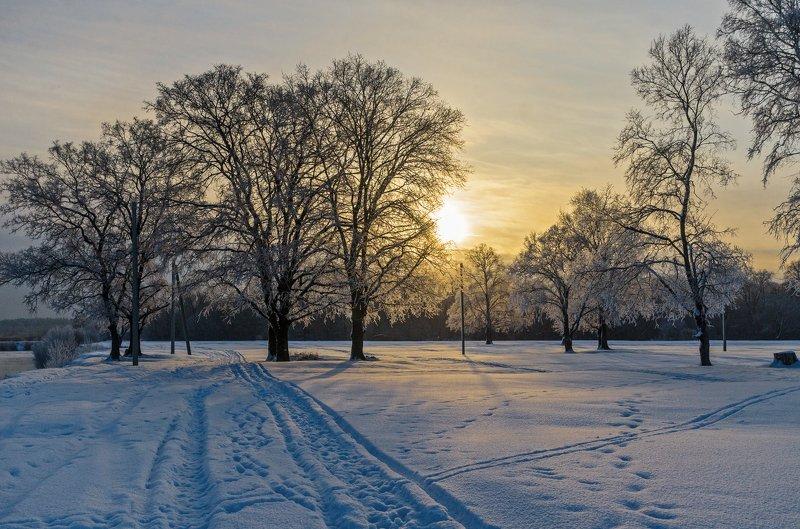 Морозный рассветphoto preview