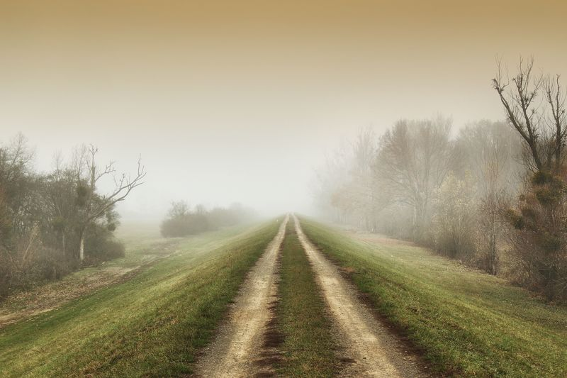 landscape, slovakia, mycountry, roads, fog, photography On the levee...photo preview