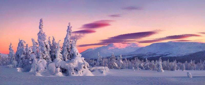 урал, зима, гух, закат, снег, ели, облака Главный Уральский хребет...photo preview