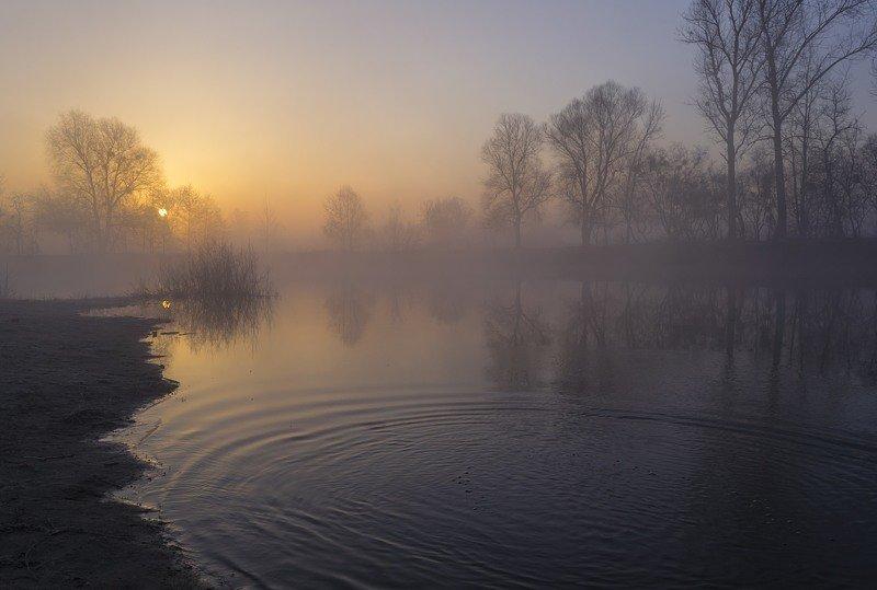 весна,март,пейзаж,река,рассвет,туман,утро,колорит,искусство,композиция,красота,река псел,украина,гадяч,сергей корнев Мартовское утро на рекеphoto preview