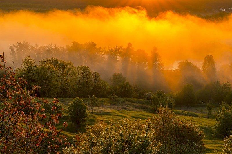 туман,рассвет,утро,свет,цвет,колорит,композиция,искусство,фотография,фотограф,сергей корнев,красота,природа Колоритный туманphoto preview