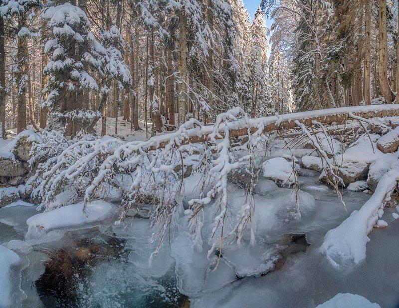 водопад, скала, лед, пороги, обрыв, горы, река, поток, горная река, муруджу, теберда, снег, лес, зима, домбай, карачаево-черкесия МУРУДЖУ В ЛЕДЯНОМ ПЛЕНУphoto preview
