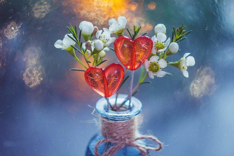 цветы, сердце, натюрморт, боке, прозрачный, брызги, вода, закат, солнце, бутылки, банки, стекло, красивый, зима Леденцыphoto preview