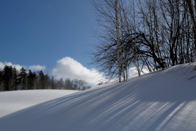 зима метель  февральские мотивыphoto preview