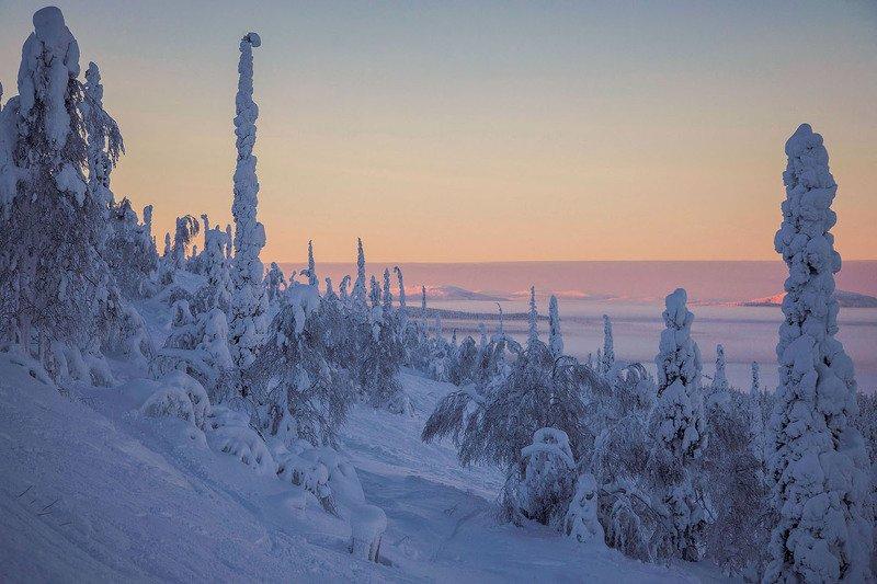 Хибины,кольский полуостров,пейзаж,север,зима,рассвет,природа Рассвет в Хибинахphoto preview