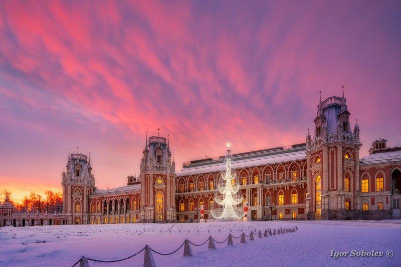 москва, царицыно, зима, рассвет Зимний рассвет в Царицыноphoto preview