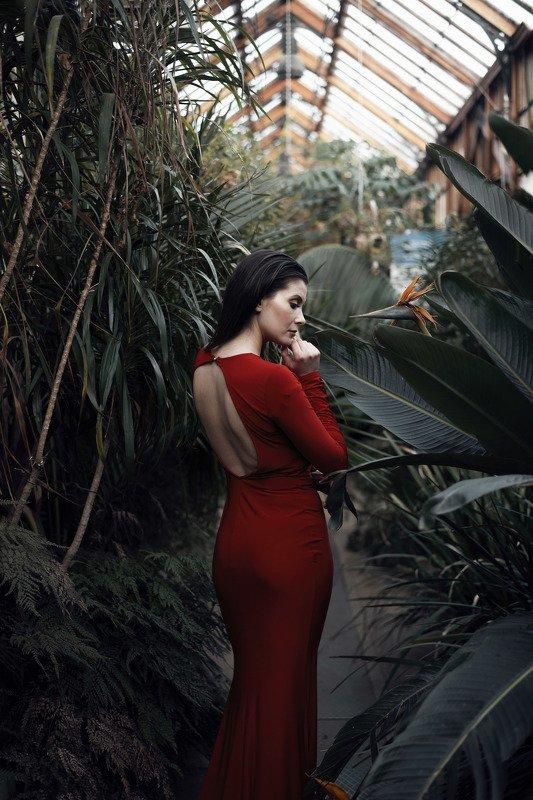red dress gardens green  Monikaphoto preview