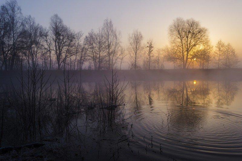 пейзаж,природа,композиция,искусство,фотограф,рассвет,весна,март,украина,гадяч,сергей корнев,туманное утро,всплеск рыбы,красота природы,прекрасный пейзаж,свет,дерево Про утро и туманphoto preview
