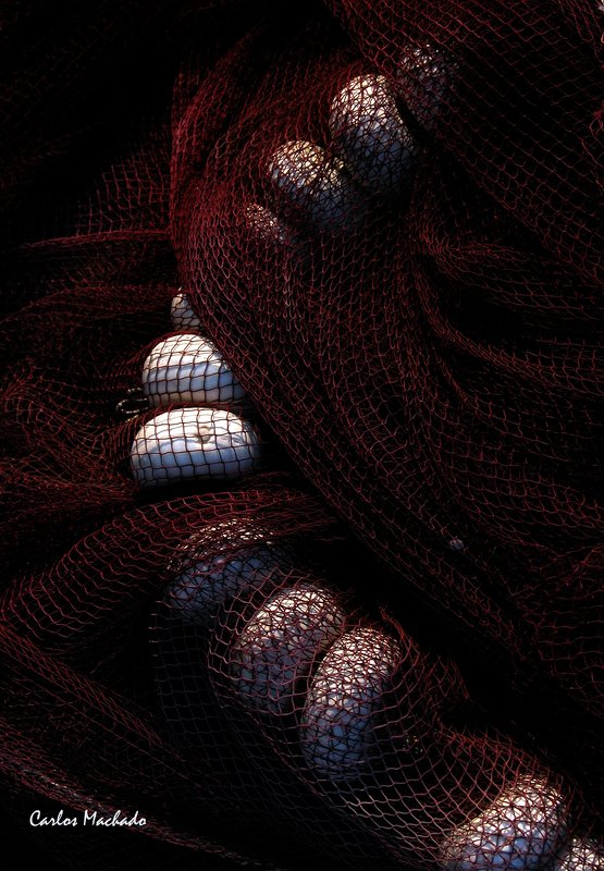 Abstraction, Still Life, Macro Elegant Fishnets photo preview