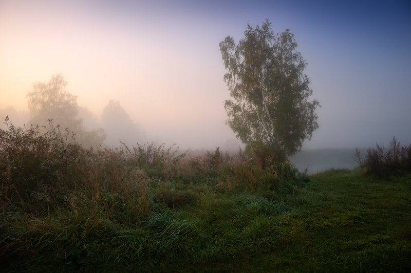 рассвет, туман, Утроphoto preview