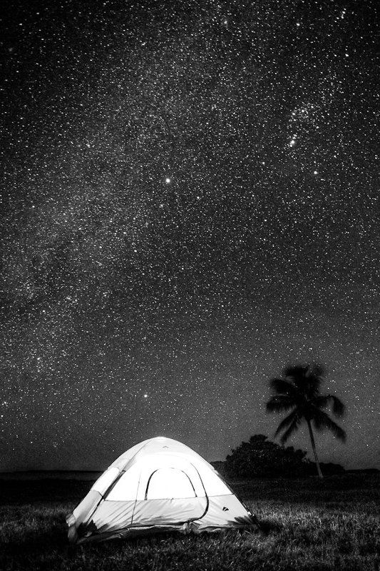 Немного о звездах в Evergladesphoto preview