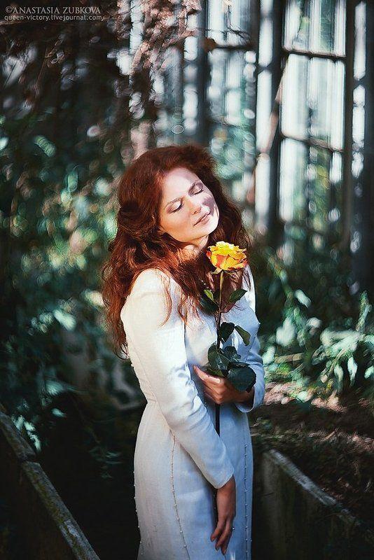 роза, оранжерея, покровское-стрешнево Rosephoto preview